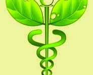 Energy Medicine And Vision