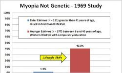 Alternative Myopia Research and Proven Natural Treatment – 3. Problems with the Hereditary Theory